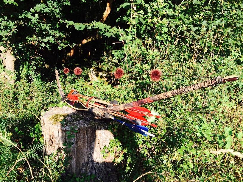 Arc et Flèches sur une Souche
